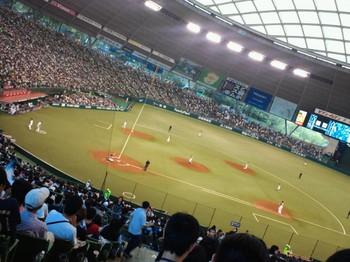 NEC_0063y.JPG